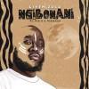 Given Zulu – Ngibonani ft. Kid X & Professor Mp3 Download