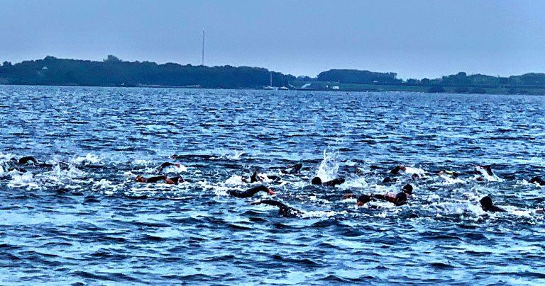 Zwemmmen Brouwersdam