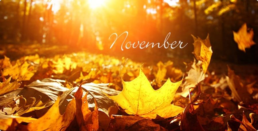 November is the month