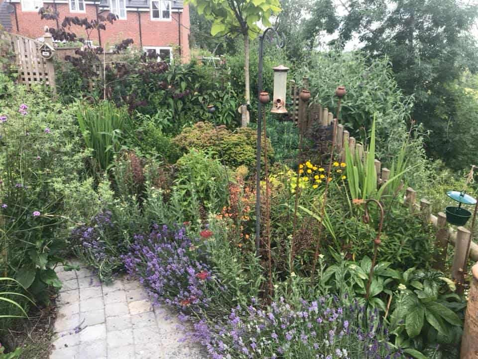 Hook Norton Garden Design & Build Revisited