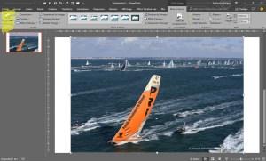 Détourer une image avec Powerpoint - 01
