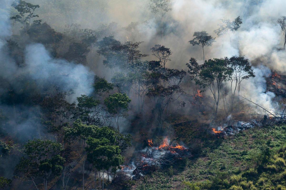Orlando Câmara   Índices mostram que sociedade não se preocupa com degradação ambiental no AM