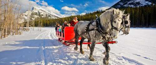 Image result for sleigh ride""