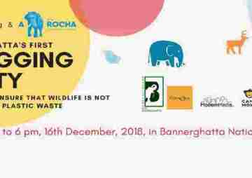 Bannerghatta Plogging Party