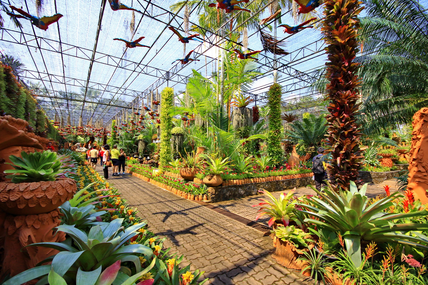 Nong Nooch Tropical Botanical Garden: One of the Most ... on Tropical Backyard  id=71156