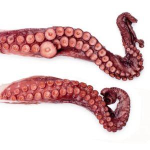 Octopus legs