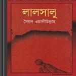 LalSaloo by Syed Waliullah pdf