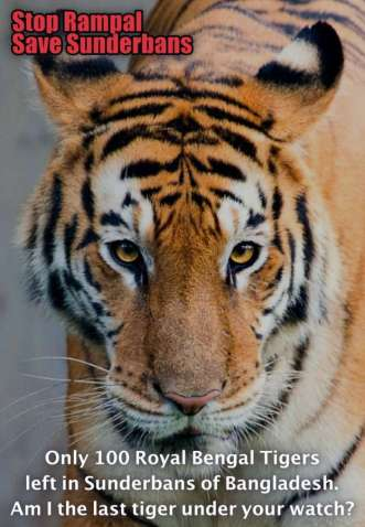 Save Royal Bengal Tiger
