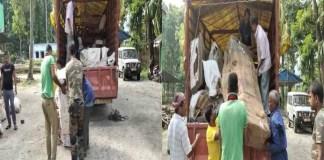 ফুলবাড়ি বাইপাস থেকে কয়েক লক্ষ টাকার সেগুন কাঠ উদ্ধার করল সারুগাড়া রেঞ্জের বনকর্মীরা