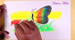 Draw And Colour Pictures Bangla Viral