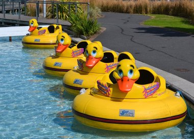 Disco Ducks at Pickie Fun Park in Bangor Northern Ireland