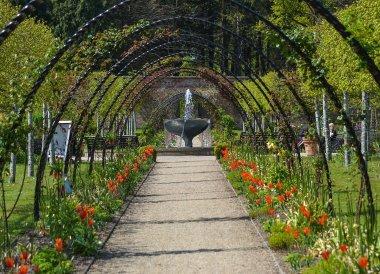 Fountain in Spring, Bangor Castle Walled Garden Bangor N Ireland