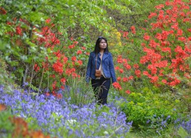 Mount Stewart in Spring. Things to do in Northern Ireland Tourist Attractions