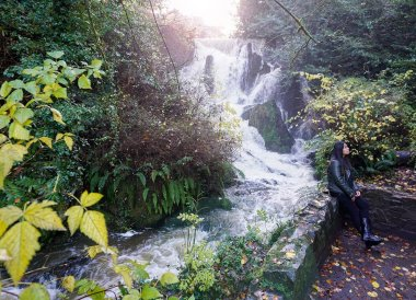 Waterfall and River, Crawfordsburn Country Park in Bangor Northern Ireland