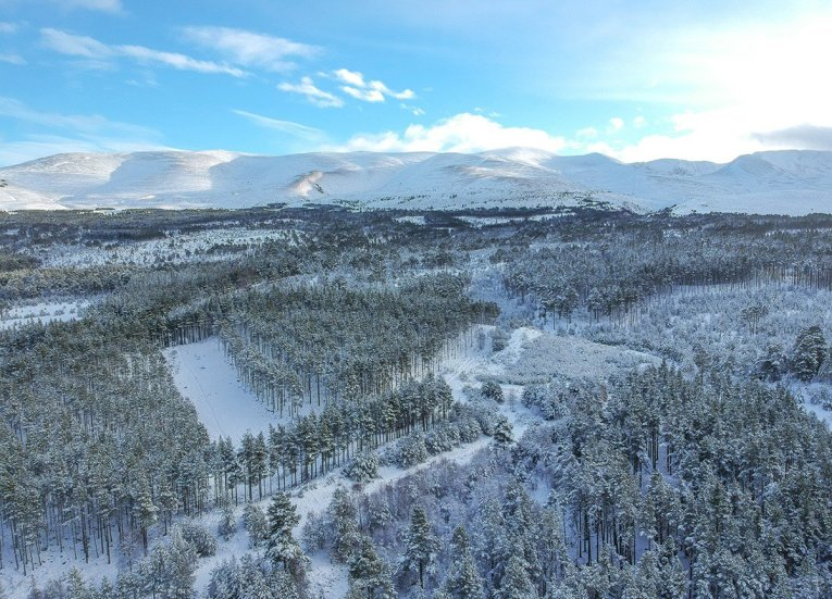 Drone Over Aviemore, Scotland Road Trip in Scottish Highlands in Winter Snow