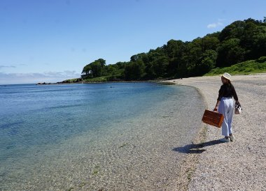 Small Beach at Crawfordsburn Summer in Bangor Northern Ireland