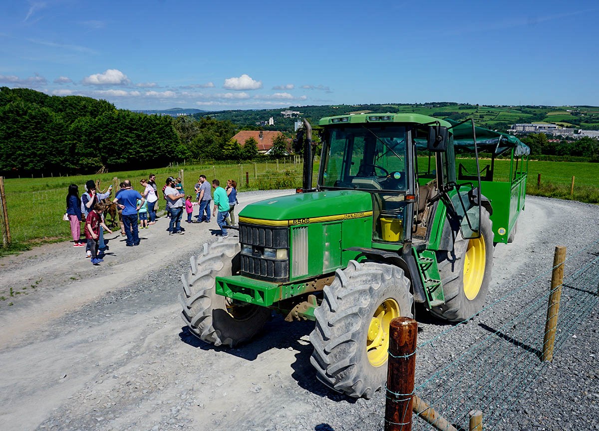 Tractor Ride to Red Deer Park Streamvale Open Farm Dundonald