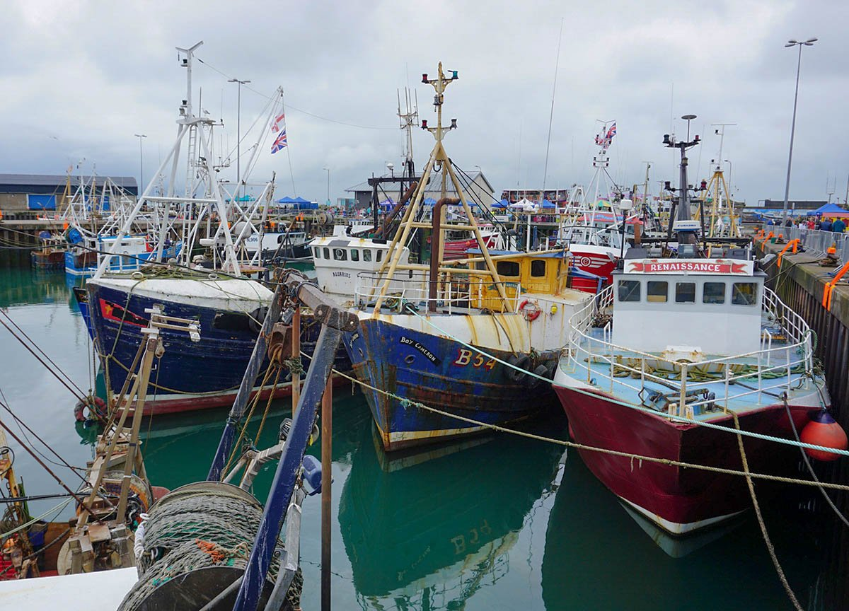 Boats in Portavogie Harbour on Ards Peninsula Northern Ireland
