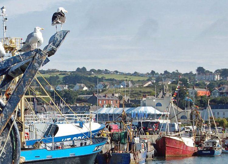Charming Fishing Village of Howth on Ireland's Ancient East