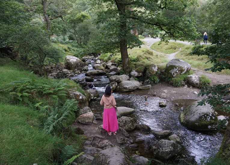 Forest Walks at Glendalough Wicklow Ireland's Ancient East Road Trip Itinerary