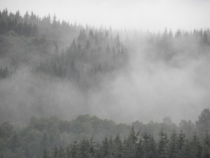Land-atmosphere