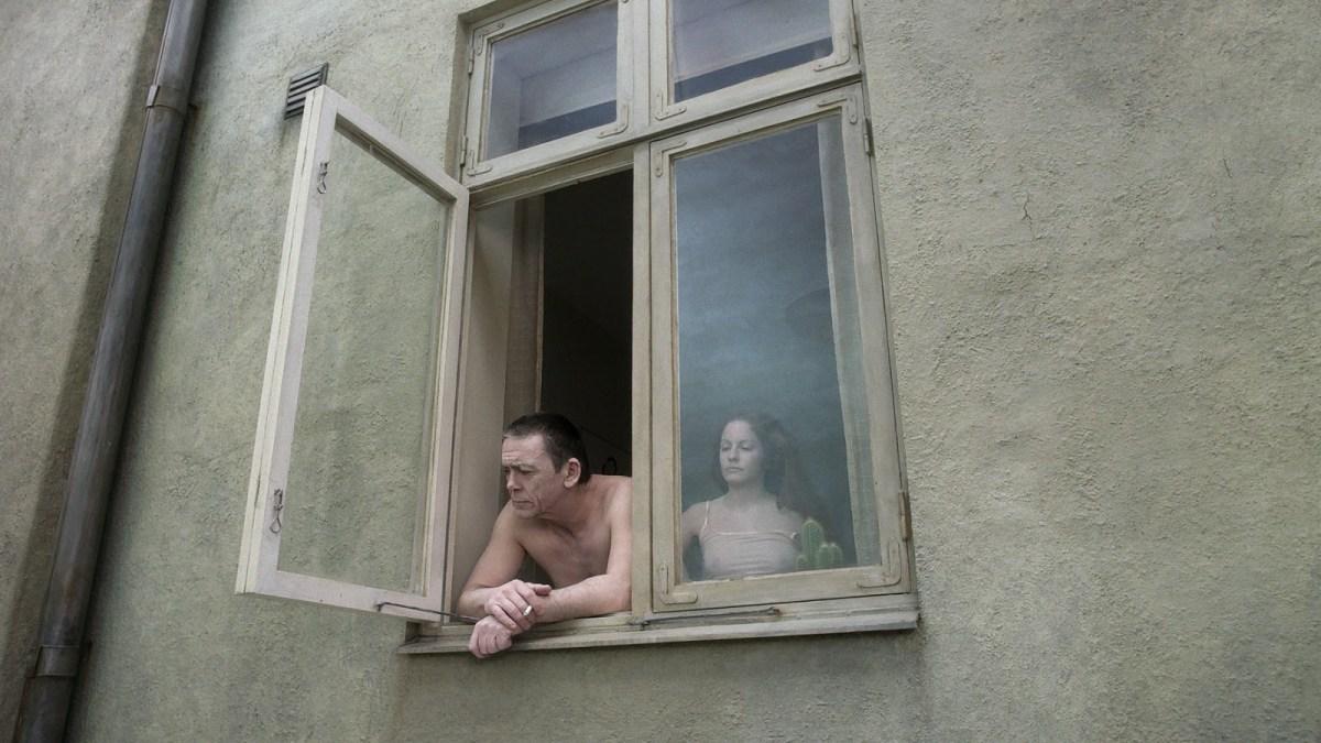 Pigeon_Couple_Windowlrg