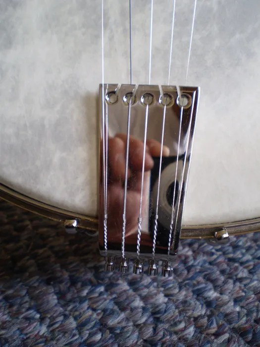 An adjustable tailpiece