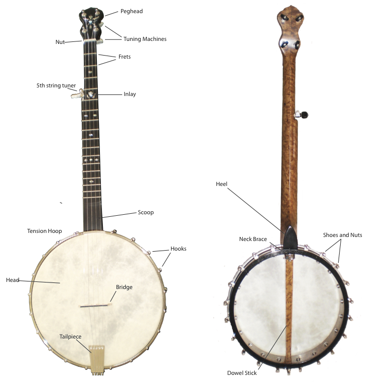 An understanding of the banjo's parts is essential to banjo making. This diagram displays a banjo with all of its parts labeled.