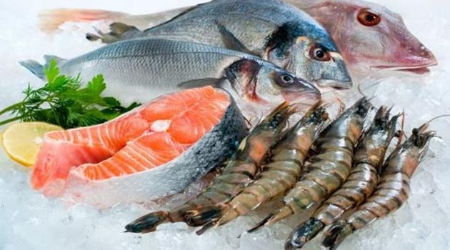 Seafood exports rise 13%