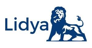 top-best-online-quick-instant-personal-loans-nigeria-banknaija-lidya