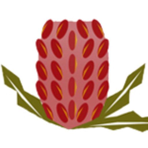 Banksia Bunch