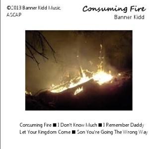 original-consuming_fire_noise_trade