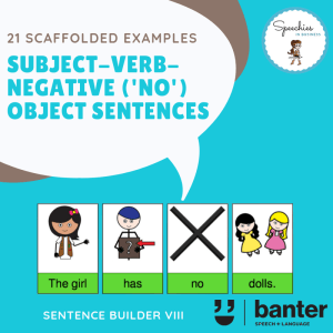 Subject Verb Negative (No) Object Sentences