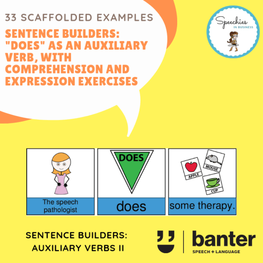 DOES (Auxiliary Verbs) Sentences