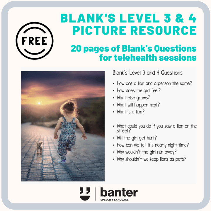 Blanks Level 3 and 4 Picture Resource