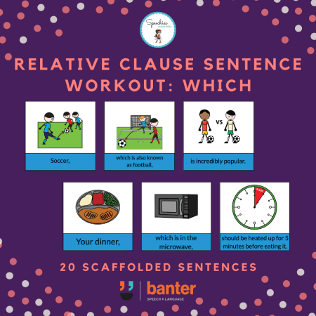 Relative Clauses Which