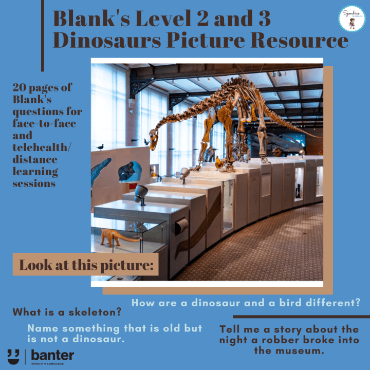 Blank's Level 2 and 3 Dinosaurs Picture Resource