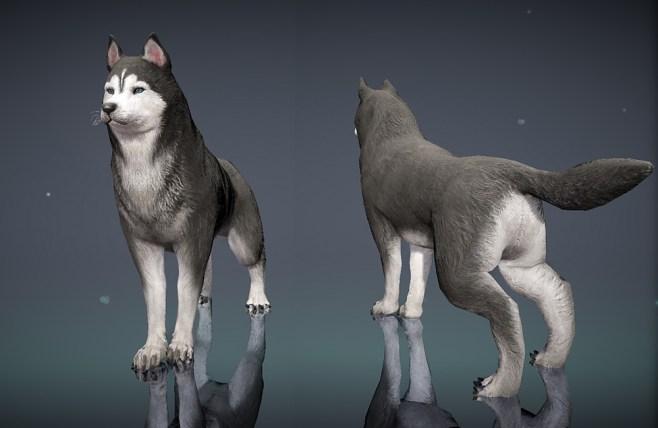 Mascota Lobo en el juego Black Desert Mobile