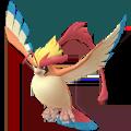 pokemon go Mega Pidgeot