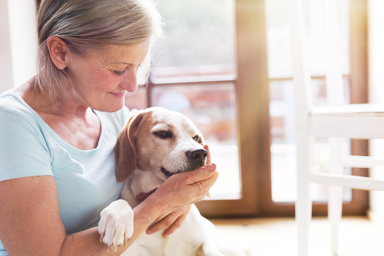 Animal Therapy for Depression