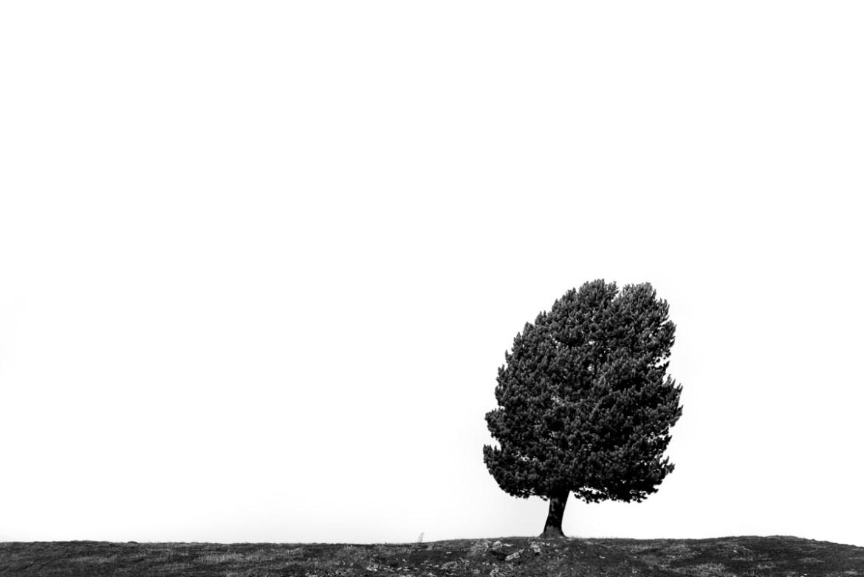 Ambassade Bonnat & Crozet Le point de vue du Gras Quel est la place de l'être humain dans le monde actuel Baptiste Gamby Photographe Architecture Grenoble Portraits Trombinoscopes entreprises Photographie d'art photographie d'art contemporain Arles Photographie 2017