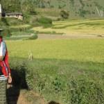 Paysanne dans les rizières de Lobesa au Bhoutan - blog Bar a Voyages