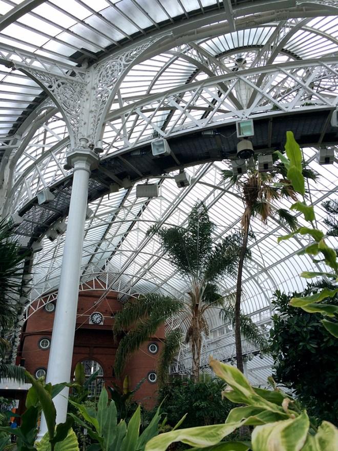 Le jardin d'hiver du People's Palace de Glasgow – au fond, un sympathique salon de thé