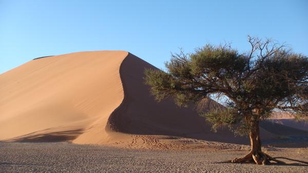 Namib-Namibie-blog-bar-a-voyages