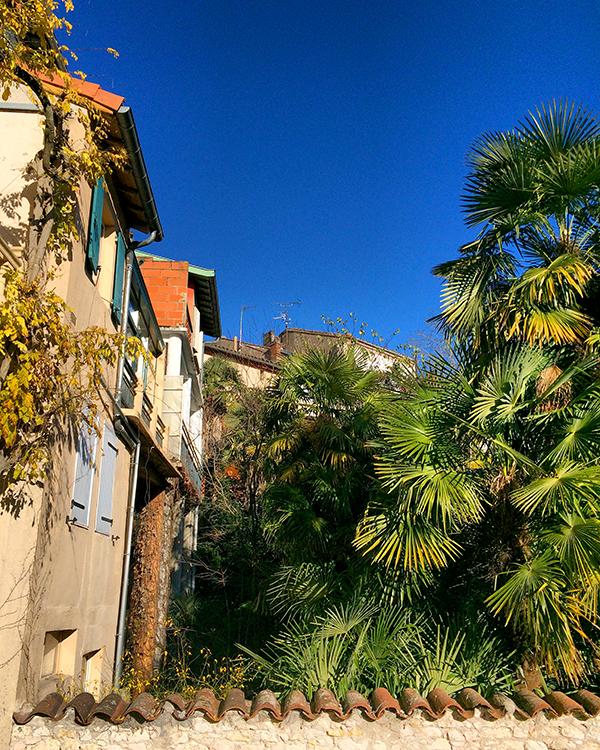 Dans le jardin de l'hôtel Lapérouse des Cordeliers à Albi
