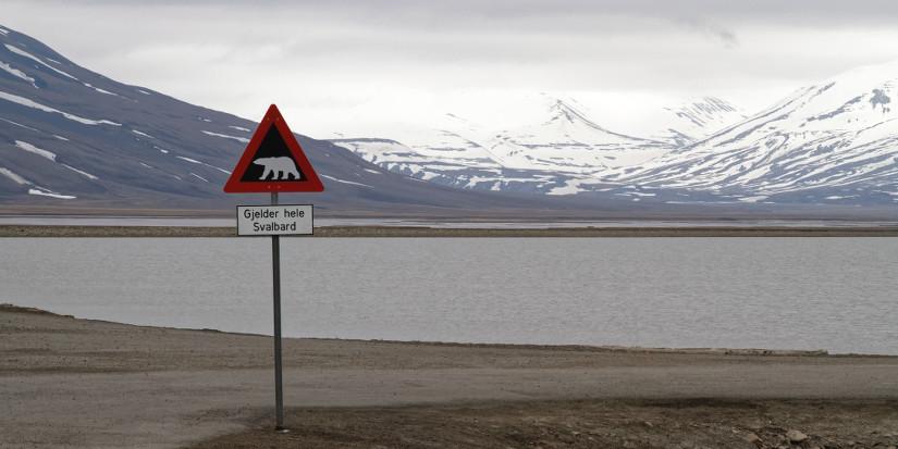 Svalbard - blog Bar a Voyages