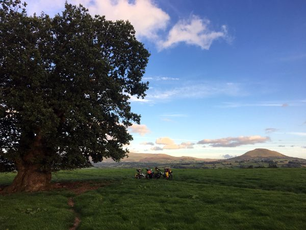 L'Angleterre à vélo, à la rencontre des arbres centenaires
