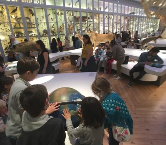 enfants regardant une mappemonde au Muséum de Bordeaux