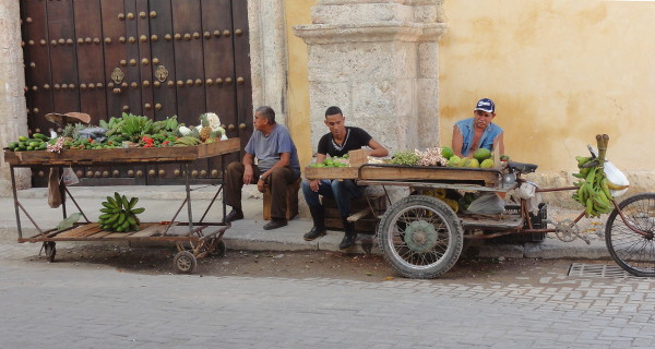 Maraîchers dans les rues de La Havane