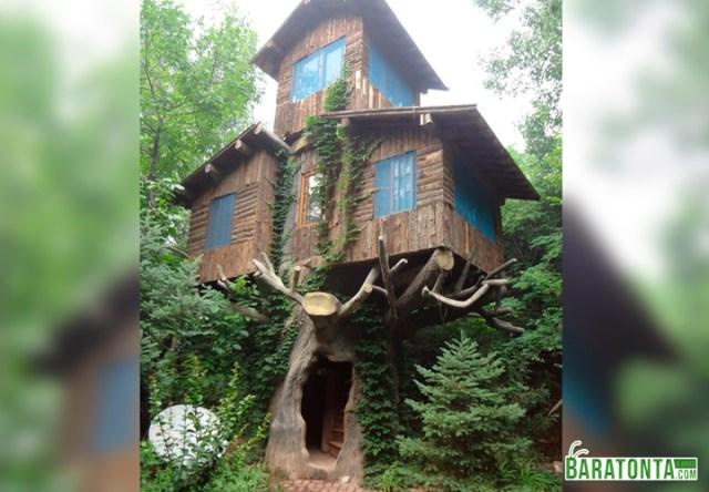 Posso ter uma casa na árvore mesmo sendo adulto